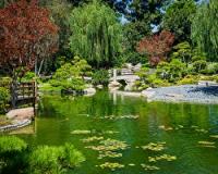 Как правильно разместить сад на участке, где есть пруд
