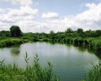 аэрация пруда
