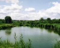 Содержание водоема